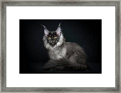 Black And Smoke Framed Print