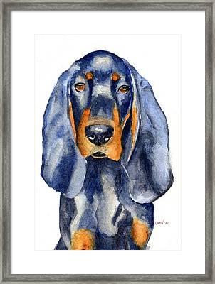 Black And Tan Coonhound Dog Framed Print
