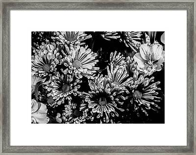 Black And White Bouquet Framed Print