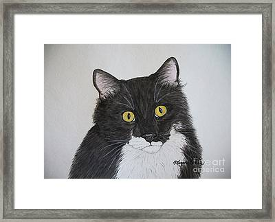 Black And White Cat Framed Print by Megan Cohen