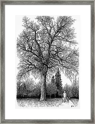 Black And White Christmas Framed Print