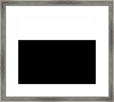 Black And White Colorblock  Framed Print