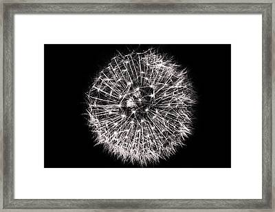 Black And White Dreams Framed Print