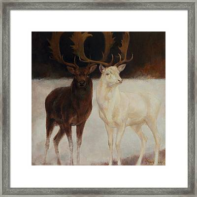 Black And White Fallow Deers Framed Print