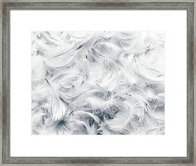 Black And White Feathers Background. Framed Print