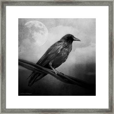 Black And White Gothic Crow Raven Art Framed Print