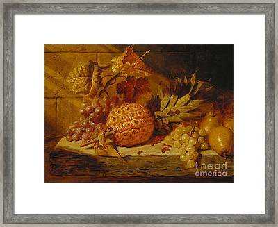 Black And White Grapes, Pears, Redcurrants And A Pineapple On A Ledge, 1845  Framed Print