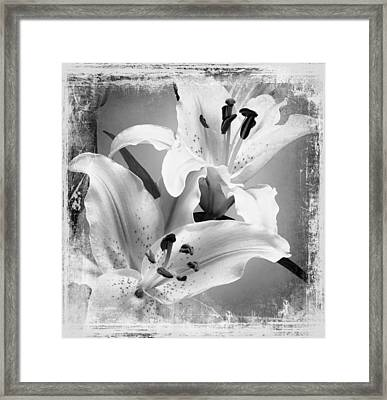 Black And White Grunge Lilies Framed Print