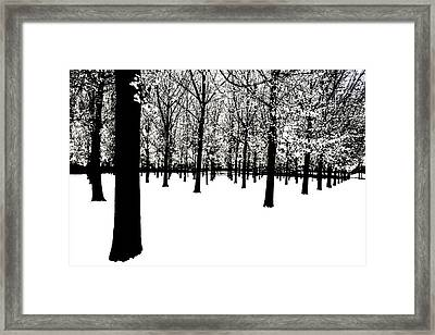 Framed Print featuring the photograph Black And White by Jim Dollar