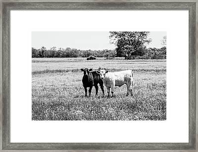 Black And White Love Framed Print by Scott Pellegrin