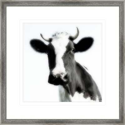 Black And White Nature Landscape Photography Art Work Framed Print