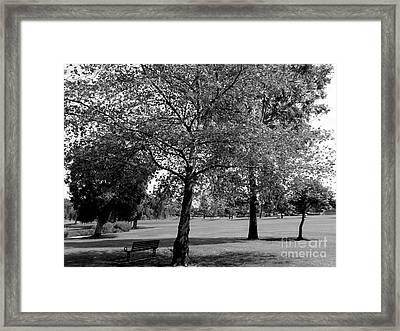 Black And White Nature Framed Print