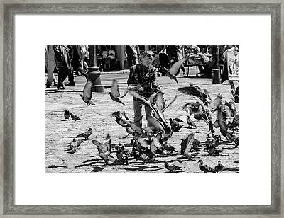Black And White Of Boy Feeding Pigeons In Sarajevo, Bosnia And Herzegovina  Framed Print