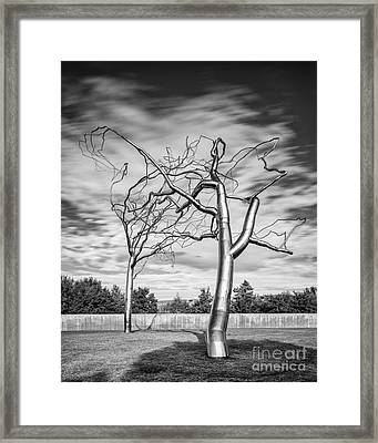 Black And White Photograph - Roxy Paine - Conjoined At The Museum Of Modern Art - Fort Worth Texas Framed Print