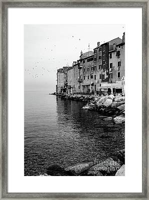 Black And White - Rovinj Venetian Buildings And Adriatic Sea, Istria, Croatia Framed Print