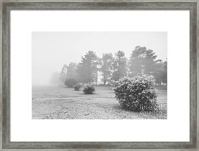 Black And White Snow Landscape Framed Print by Jorgo Photography - Wall Art Gallery
