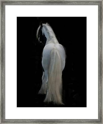 Black And White Study II Framed Print by Terry Kirkland Cook