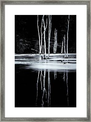Black And White Winter Thaw Relections Framed Print