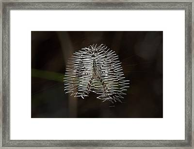 Black And Yellow In White And Black Framed Print