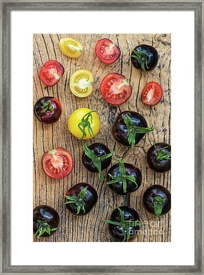 Black And Yellow Tomatoes Framed Print by Tim Gainey