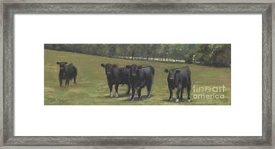 Black Angus Buddies Framed Print by Terri  Meyer