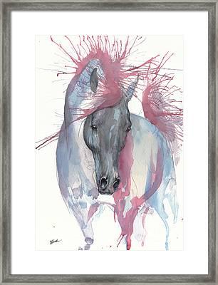 Black Arabian Horse 2017 07 18 Framed Print