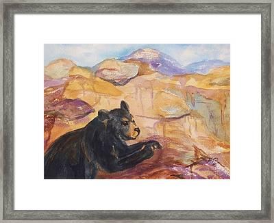 Black Bear Cub Framed Print