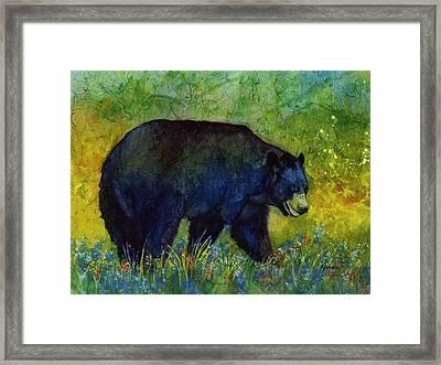 Black Bear Framed Print by Hailey E Herrera