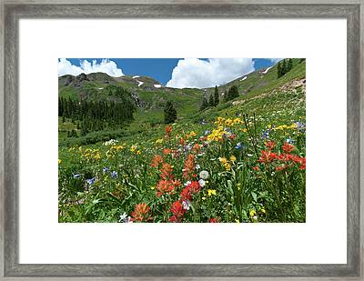 Framed Print featuring the photograph Black Bear Pass Landscape by Cascade Colors
