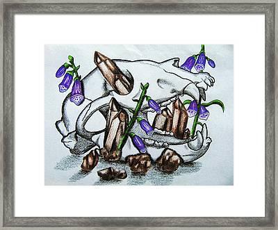 Black Bear Skull, Smokey Quartz And Foxglove Framed Print by Christina Marin