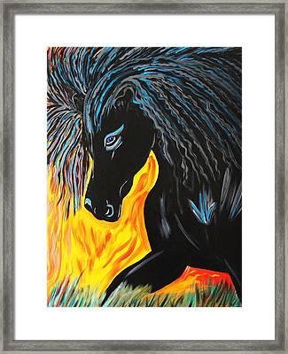 Black Beauty Framed Print by Nora Shepley