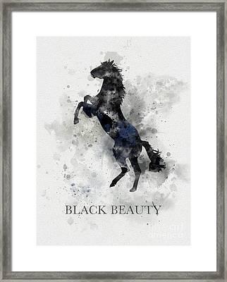 Black Beauty Framed Print by Rebecca Jenkins
