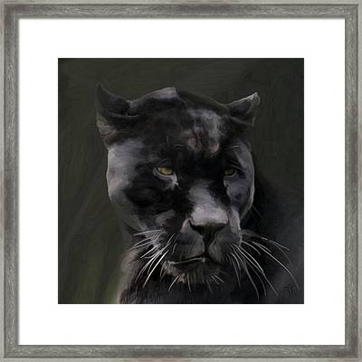 Black Beauty Framed Print by Vic Weiford