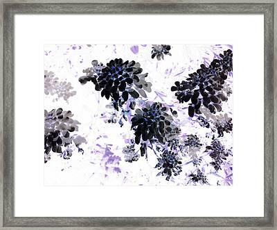 Black Blooms I Framed Print