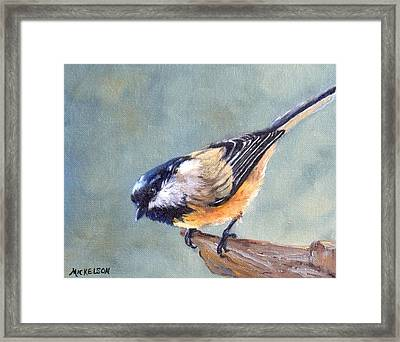 Black Capped Chickadee Framed Print by Debra Mickelson