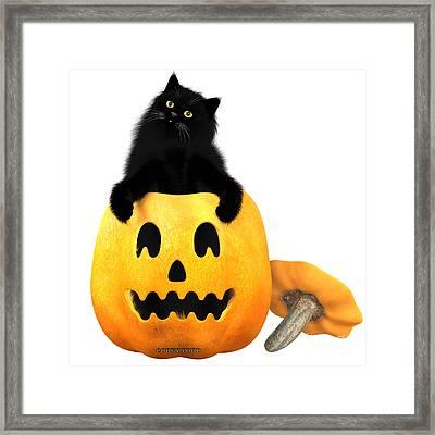 Black Cat And Halloween Framed Print