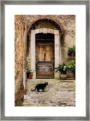Black Cat And Wood Door, Biot, France Framed Print