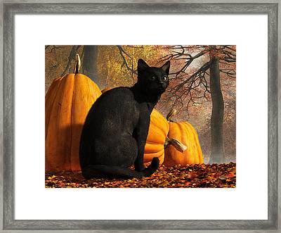 Black Cat At Halloween Framed Print by Daniel Eskridge