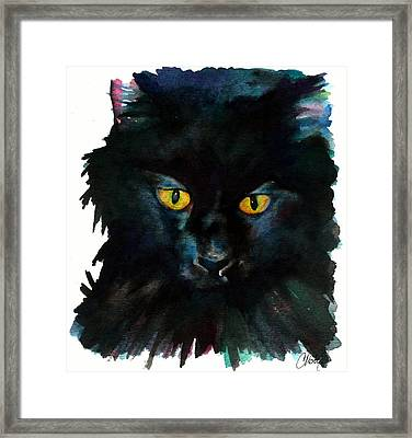 Black Cat Framed Print by Christy  Freeman