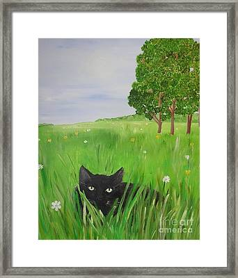 Black Cat In A Meadow Framed Print