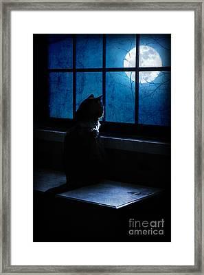 Black Cat Moon Framed Print