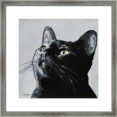 Black Cat Framed Print by Slade Roberts