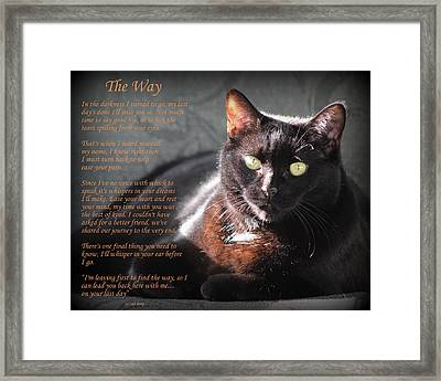 Black Cat The Way Framed Print