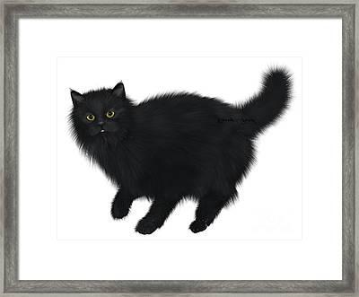 Black Cat Walking Framed Print by Corey Ford