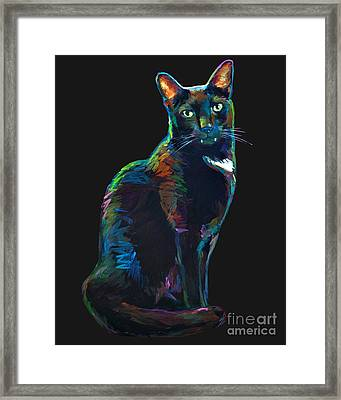 Black Cat With Fangs Framed Print