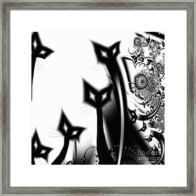 Black Cats Framed Print by Mindy Sommers