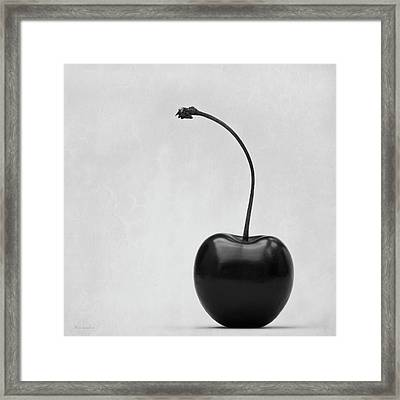 Black Cherry Framed Print by Wim Lanclus