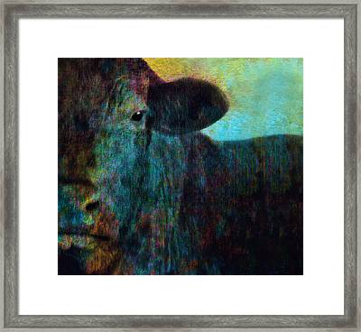 Black Cow Two  Framed Print