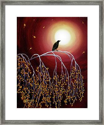 Black Crow On White Birch Branches Framed Print by Laura Iverson