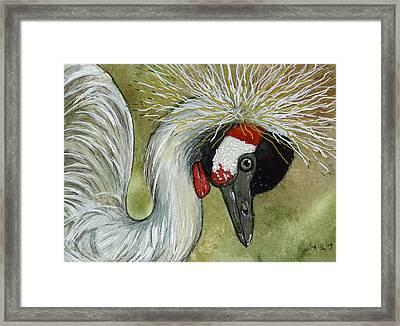 Black Crowned Crane - Balearica Pavonina Framed Print by Svetlana Ledneva-Schukina